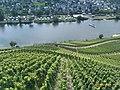 56856 Zell, Germany - panoramio (5).jpg