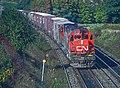 6 Roger Puta Shots of a VIA Train and a CN Train (31888095562).jpg