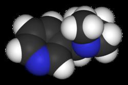 Nikotiini Puoliintumisaika