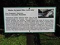 A Silesian Zoological Garden jac 20.JPG