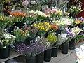A Taste Of Spring (3425585092).jpg