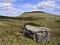 A boulder in the Black Mount - geograph.org.uk - 1450894.jpg