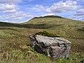 A boulder in the Black Mount - geograph.org.uk - 1450894.jpg
