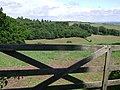 A wooden gate, Holcombe Down Road - geograph.org.uk - 1353101.jpg
