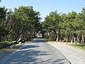 Acesso praia Enoshima - panoramio.jpg