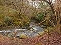 Afon Dulas - geograph.org.uk - 1161832.jpg
