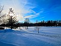 Aldo Leopold Park - panoramio.jpg