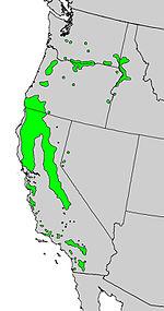 Alnus rhombifolia range map.jpg