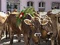Alpabfahrt Mels. 2007-09-08 13-53-02.jpg