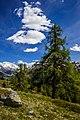 Alps of Switzerland DSC 2030-15 (14523987188).jpg