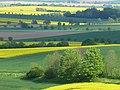 Am Rennstieg zwischen Eberholzen und Westfeld - panoramio (1).jpg