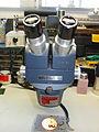 American Optical 569 Stereo Star Zoom Microscope.jpg