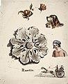 Anders Ekman - Kipsiruusuke, pojan rintakuva, koira kori suussa, perhonen, omena, jossa lehti ja kukka sekä hevosvaunut, joissa kolme henkilöä - A II 1575-16 - Finnish National Gallery.jpg
