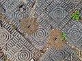 Anthills and brick sidewalk (28154167335).jpg
