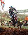 Anthony Boissiere MXoN 2008.jpg