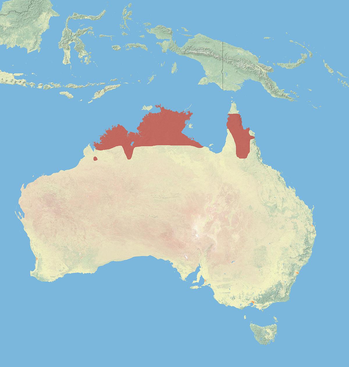 Kangaroo Island Information Wikipedia