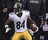Antonio Brown 2015 (cropped).jpg