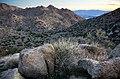 Anza-Borrego high country (13496525073).jpg