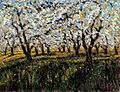 Apple Blossom by Samir Sammoun 24x30 Original on Canvas.jpg