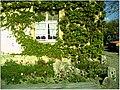 April Parc Natural Freiburg Germany - Master Landscape Rhine Valley Photography 2014 Landgut Mundenhof - panoramio (13).jpg