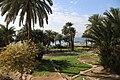 Aqaba fields - panoramio.jpg