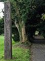 Arboretum, Barnetts Demesne - geograph.org.uk - 1036314.jpg