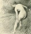 Artemisia.png