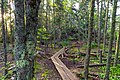 Artists' Point Hiking Trail - Grand Marais, Minnesota (36238868656).jpg