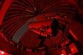 Artur Kraus Telescope.jpg