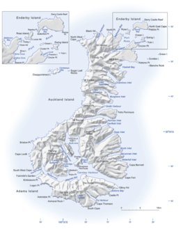 Auckland Islands - Wikipedia