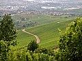 Ausblick zum Mercedes-Werk und zur Mercedes-Benz Arena in Stuttgart - panoramio.jpg