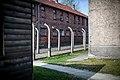 Auschwitz - panoramio (29).jpg