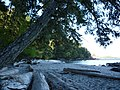 Aylard Farm Beach at Becher Bay - panoramio.jpg