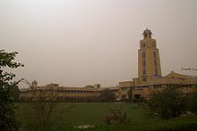Low, gold-colored building seen from green space