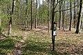 Babice-nad-Svitavou-rezervace-Čihadlo-na-svém-jihozápadním-okraji-při-silnici2020.jpg