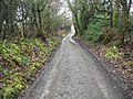 Back towards Crossing Cottage - geograph.org.uk - 2222886.jpg
