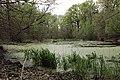 Bajoro2 - panoramio.jpg