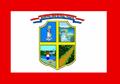 Bandera de Presidente Franco.PNG