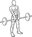 Barbell-upright-rows-2.png