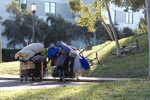 Barnsdall Art Park - Shopping carts at Art Park