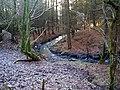 Barnshalloch Burn - geograph.org.uk - 638089.jpg
