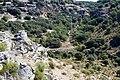 Barranco rio dulce - panoramio (5).jpg