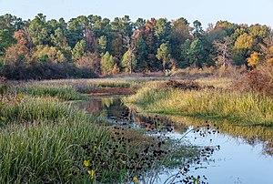 Pine Bluff, Arkansas - Bayou Bartholomew