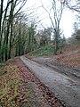 Bear Hill, Woodchester - panoramio.jpg