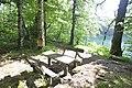 Beauty of National Park Biogradska Gora, Montenegro 08.jpg