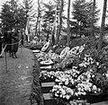 Belangstellenden bij een militaire begrafenis, Bestanddeelnr 255-8995.jpg