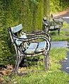 Benches, Barnett Demesne - geograph.org.uk - 1613261.jpg