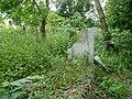 Biechowo - stary ewangelicki cmentarz - panoramio (1).jpg