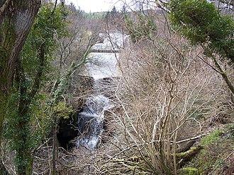 Dunoon - Bishops Glen