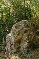 Bois des Roches Souzy-la-Briche n4.jpg